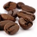 القهوه Coffea arabica (Rubiaceae)