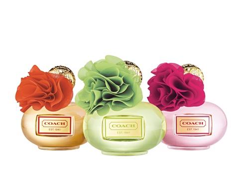 Coach Pour 2013 Poppy Parfum Blossom Citrine Un Femme SzMUVp