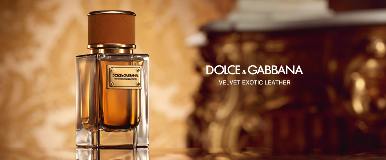 Men amp;gabbana And Dolce Women For Exotic Velvet Leather eroxdCB