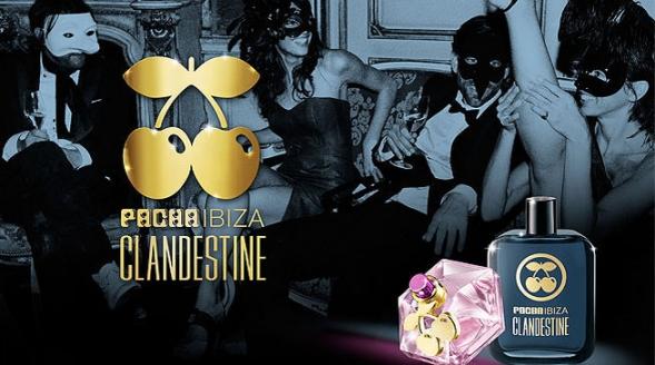 a73c55571 Clandestine For Women Pacha Ibiza Feminino Imagens Clandestine For Women  Pacha Ibiza Feminino Imagens ...