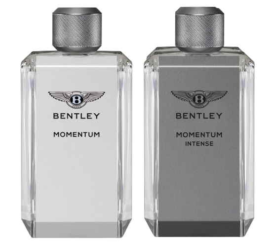 Men Intense Bentley Momentum Intense Momentum Bentley For rdshCtQ
