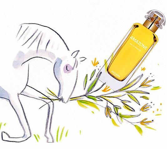 Amazone (1974) Hermès Perfume