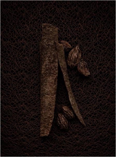 96f46f5f0656f ... Splendid Wood (Le Vestiaire des Parfums) Yves Saint Laurent for women  and men Pictures