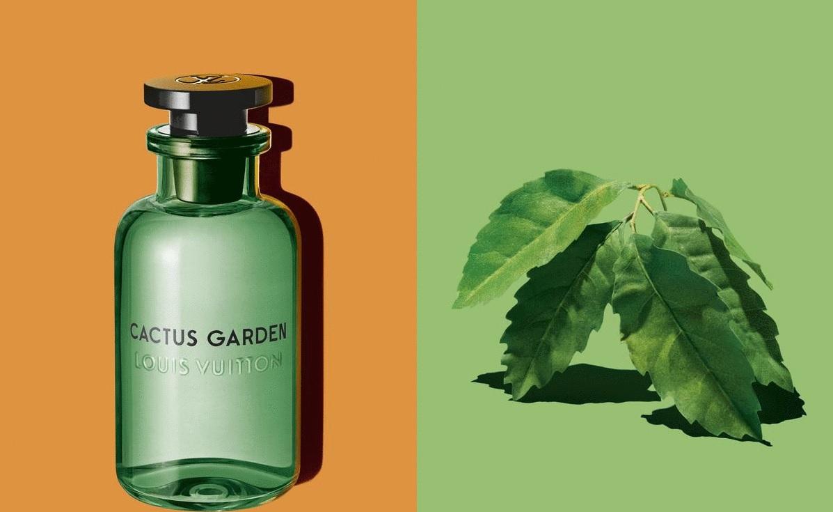Cactus Garden Louis Vuitton perfume - a new fragrance for