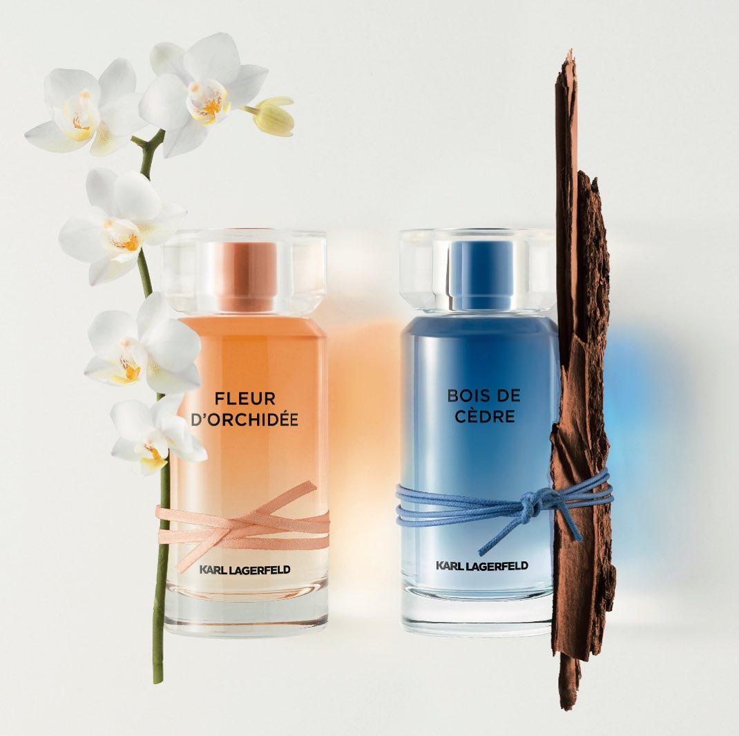 337c5fc0570 Bois de Cedre Karl Lagerfeld cologne - a new fragrance for men 2019