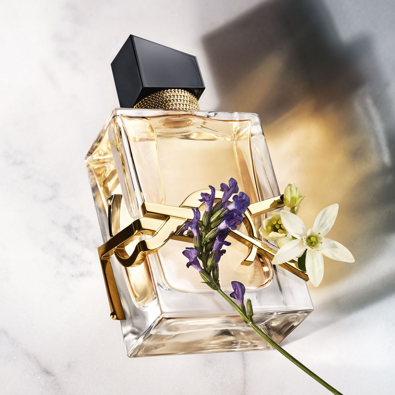 Saint Perfume A Women Fragrance Libre Laurent Yves New For 2019 LUMSzVpjGq
