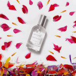 Spotlight on Natural Perfumehouse Skylar