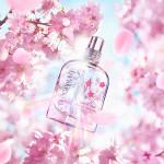 L Occitane Cherry Blossom – Cerisier Irisé Eau De Toilette