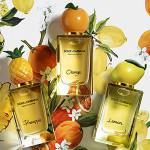 Dolce   Gabbana Fruit Collection: Lemon, Orange, Pineapple