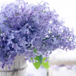 Lilacs out of the Dead Land: The Scent of Hope