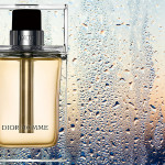 Overcast Twilight in May: DIOR HOMME