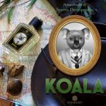 New Zoologist Koala!