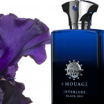 Interlude Black Iris Man: Dark and Decadent