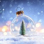 Perfumed Horoscope: December 7 - December 13