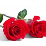 Marie-Helene Rogeon of Les Parfums de Rosine Has Passed Away