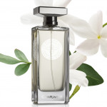 Compliment by Maison Violet – Gorgeous White Floral Bouquet