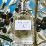 Parco Palladiano X: Olivo - Summer s Ode to Olives from Bottega Veneta