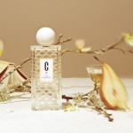 The Brand Carlotha Ray Launches Its First Line of Perfumes