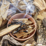 Palo Santo: The Fragrant Wood of America That Purifies, Soothes, and Relaxes