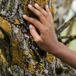 BWME 2021: Eurofragance Produces its First Captive, L'Âme du Bois™